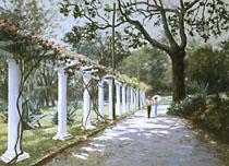 Washington-Maguetas-alameda_no_jardim_botanico